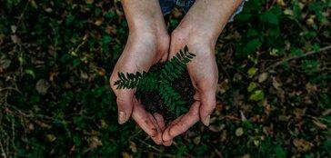Pályázati kisokos- fenntarthatóság